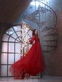 La reina misteriosa de la noche en un vestido, un vuelo y agitar asombrosos lujosos deliciosos, muchacha morena sube fotografía de archivo