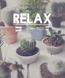 La relaxation détendent refroidissent le concept de repos de sérénité de paix images stock