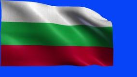 La República de Bulgaria, bandera de Bulgaria, bandera búlgara - lazo ilustración del vector