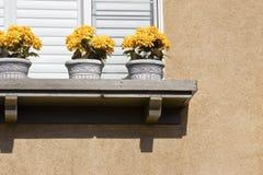 La repisa de la ventana tiene flores Imágenes de archivo libres de regalías