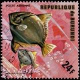 LA REPUBBLICA DEL BURUNDI - CIRCA 1974: il francobollo, stampato nel Burundi, mostra ad un argento Moony del pesce il monodactylu Fotografia Stock Libera da Diritti