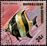 LA REPUBBLICA DEL BURUNDI - CIRCA 1974: il francobollo, stampato nel Burundi, mostra ad un idolo Zanclus di moresco del pesce i c Fotografie Stock Libere da Diritti