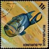 LA REPUBBLICA DEL BURUNDI - CIRCA 1974: il francobollo, stampato nel Burundi, mostra ad un pesce balestra nero di regina del pesc Fotografie Stock Libere da Diritti