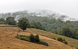La respiración de la montaña Imágenes de archivo libres de regalías