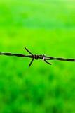 La rete fissa marcata Fotografia Stock Libera da Diritti
