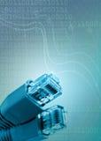 La rete lega la connettività con un cavo Immagine Stock Libera da Diritti