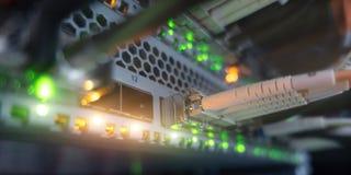 La rete ottica della fibra cabla il quadro d'interconnessione ed il commutatore Vista dal basso L'immagine contiene il rumore immagine stock