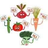 La reunión de la forma de vida sana de la comida sana de las verduras stock de ilustración