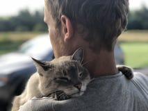La reunión feliz del gato de ojos azules gris con el dueño después de dividir, el gato agradecido abraza el rubio y las sonrisas imagen de archivo