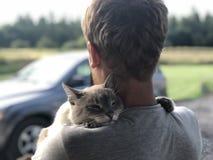La reunión feliz del gato de ojos azules gris con el dueño después de dividir, el gato agradecido abraza el rubio y las sonrisas imagen de archivo libre de regalías