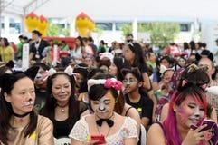 La reunión más grande de la gente con Cat Faces Fotografía de archivo libre de regalías