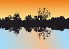 La riflessione della natura e degli alberi in acqua Immagine Stock Libera da Diritti