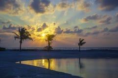 La riflessione delle palme sulla riva di mare - esponga al sole il raggio con i clo Fotografie Stock Libere da Diritti
