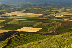 La Rioja Royalty Free Stock Photo