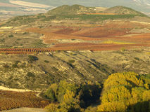 La rioja in autumn Royalty Free Stock Photos