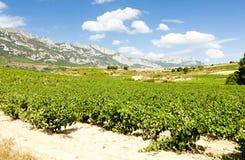 La Rioja, Spain Royalty Free Stock Photos