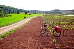 La Rioja vineyard fields in The Way of Saint James. La Rioja vineyard fields biking in The Way of Saint James with bike stock image
