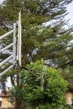 La riparazione rotta del cerchio di pallacanestro funziona temporaneamente l'albero confuso ed il cielo del fondo fotografia stock