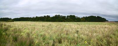 La riserva naturale Mannhagener attracca in Meclemburgo-Pomerania, Germania Immagine Stock Libera da Diritti