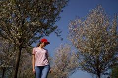 La riuscita donna di affari gode del suo tempo libero di svago in un parco con i ciliegi sboccianti di sakura che portano i jeans fotografia stock libera da diritti
