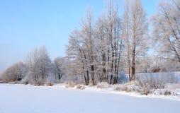 La riva del fiume in inverno. fotografia stock libera da diritti