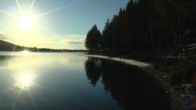 La riva del lago con i pini e la sera luminosa espongono al sole la riflessione leggermente dell'ondeggiamento nell'acqua calma archivi video
