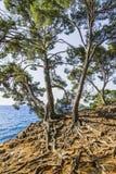 La riva mediterranea Immagine Stock