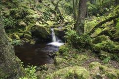 La rive et la cascade chez Padley se gorgent dans Derbyshire Image stock