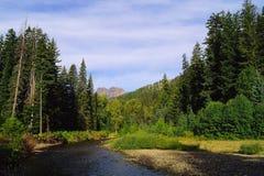 La rivière américaine image libre de droits