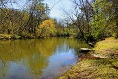 La rivière Chattahoochee image libre de droits