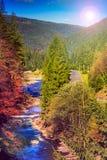 La rivière coule par le rivage rocheux près de la forêt de montagne d'automne image libre de droits