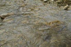 La rivière coule parmi des pierres Photos stock