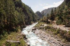 La rivière coupe des montagnes Photographie stock