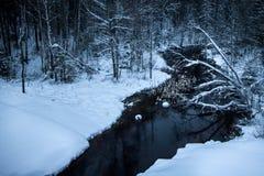 La rivière d'hiver avec de l'eau foncés traverse les banques blanches comme neige des arbres et des arbustes Rivière pendant la s photo stock