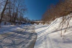 La rivière d'hiver avec la neige photos stock