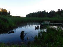 La rivière d'Oredezh Photo libre de droits