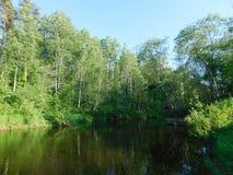 La rivière d'Oredezh au coucher du soleil Photographie stock