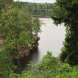 La rivière dans la forêt Photographie stock libre de droits