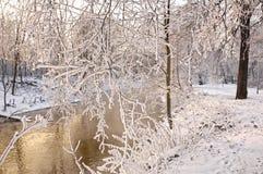 La rivière dans le jour givré Photographie stock libre de droits