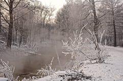 La rivière dans le jour givré photo libre de droits