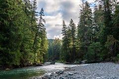 La rivière de Cowlitz à Washington photos stock