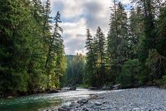 La rivière de Cowlitz à Washington photo libre de droits