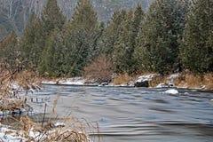 La rivière de crédit traverse un Canadien Cedar Forest photographie stock libre de droits