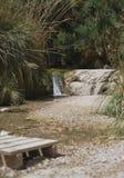 La rivière de montagne avec les chutes minuscules Image stock