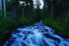La rivière de paradis photographie stock libre de droits