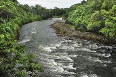 La rivière de Sarapiquà traverse le Tirimbina Rese biologique image stock