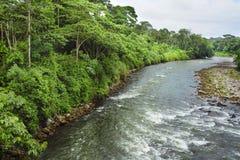 La rivière de Sarapiquà traverse la réservation biologique de Tirimbina en Costa Rica image stock