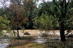 La rivière de Vidourle en inondation après forte pluie images stock