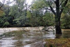 La rivière de Vidourle en inondation après forte pluie image stock