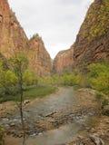 La rivière de Vierge, Zion National Park, Utah Photographie stock